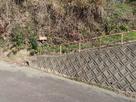 城址南側からの登城口…