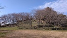 日野江城 本丸