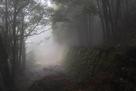 朝霧の獅子ケ城 二の丸石垣…