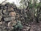 西の丸 外周石垣…