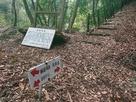 飯盛古城の案内板が置かれている分岐…