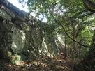 徳島城 東二の丸の石垣