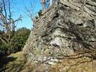 徳島城 西二の丸の石垣…