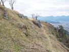 黒井城 南側斜面の石垣…