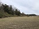 城址南端の河岸段丘…