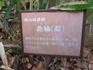 横山城遺構 曲輪(郭)…