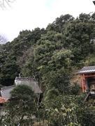 満願寺城の城址を見上げる…