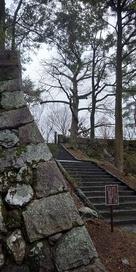 光秀お手植えのイチョウ(伝)への階段…