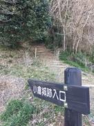大福寺北側の登城口