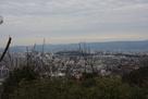 弥勒寺山城より和歌山城を眺める