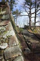 石垣と石段とイチョウの木…