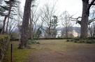 イチョウの木周辺(櫓台?)…