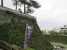 西櫓下の高石垣と外堀…