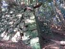 三左衛門殿丸跡の石垣②…
