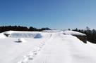 雪景色の主郭