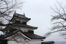 おとめ桜と三重櫓