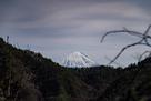 振り返れば霊峰富士