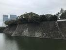 平川壕対岸から望む屏風折れ石垣