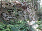 権現見付の石垣…