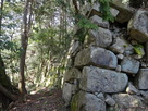 平井丸の石垣
