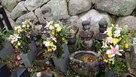 澤市場屋の古墓…