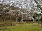 正法寺山荘跡
