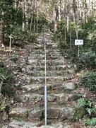 城址への階段