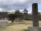 桜と三重櫓