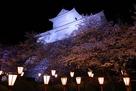 夜桜と備中櫓