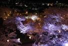 本丸から表中門の夜桜…