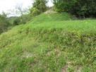 二の丸の低石垣