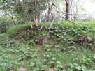 本丸北側の石積