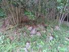 東の丸土塁先端石垣