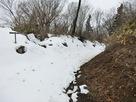 雪が積もった横堀…