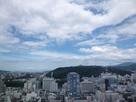 観覧車から見た城全景…