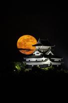 犬山城とフラワームーン…