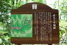 武名ヶ平城跡