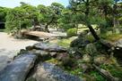 表御殿庭園 枯滝付近から中島の松をのぞむ