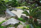 表御殿庭園 中島のソテツと青石の橋