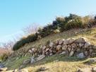 西の丸北側の石垣…