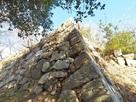二の丸西側の石垣…