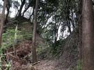 八幡祠の建つ曲輪の西側の堀切…