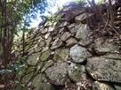 本丸櫓台背後の石垣…