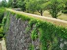 きたい丸跡の石垣…