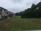 東側から見た堀と土塁…
