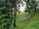 城山神社に残る土塁…
