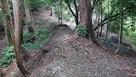 小島城 本丸北の大堀切と土橋…