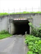 志苔館に続くトンネル…