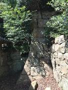 神社後ろ側の石垣…