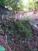 七ツ井戸の坂道